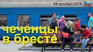 Чеченцы в Бресте