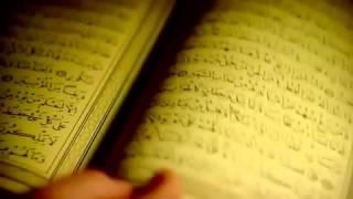 Quran pages fa tara alladheena fee qulubihim marad