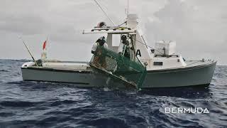 Delvin Bean: Lobster Fishing