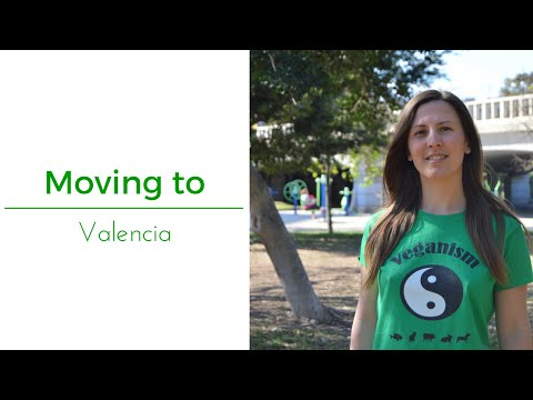 Moving to Valencia (Spain)