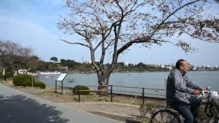 千波湖が綺麗に見える場所に徳川光圀の銅像がありました。 すぐ近くには...