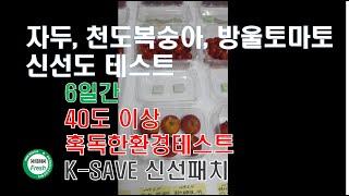복숭아,방울토마토, 자두 케이세이브 신선패치