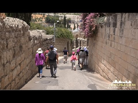 MOUNT of OLIVES JERUSALEM PILGRIMAGE VIDEO TOUR
