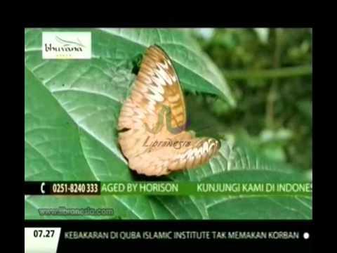 Iklan Bhuvana Bogor - Hotel & Residence