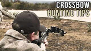 First Time Crossbow Hunting Tips