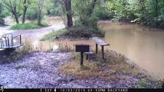 Wilson Creek time-lapse flooding 10/3/2015, Spring Valley Subdivision, Greenwood, SC