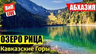 Абхазия | Экскурсия на Озеро Рица, Кавказские горы, Голубое озеро, Юпшарское ущелье, обзор, отзыв