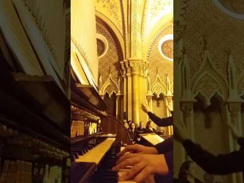 Cristo quero ser instrumento / Adoremus in aeternum