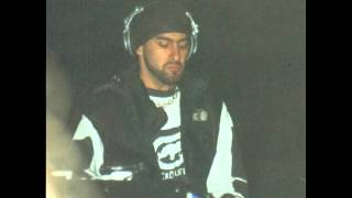 Armand van Helden - Essential mix live @ Homelands 2000