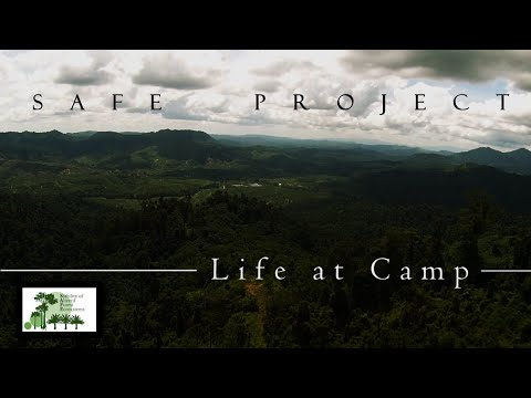 SAFE Project - Life at Camp