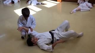 Hanmi Handachi Waza Gyaku Hanmi Katetedori Kotegaeshi