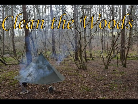 Keep the Woods Clean: VR to Woodland Camp and Craft