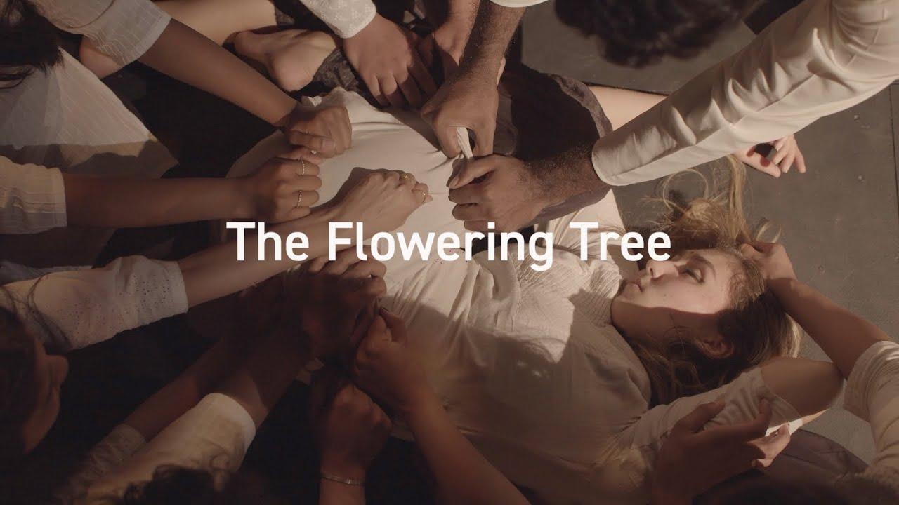 The Flowering Tree Trailer | Sangam at Bunjil Place