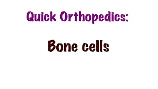 QUICK ORTHOPEDICS: Bone cells, osteoblasts,osteocytes & osteoclasts