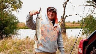 На рыбалку!!! Ленинск, 2016