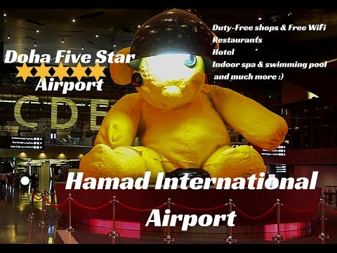 Airport doha qatar airways inside