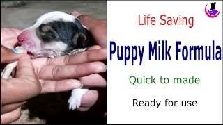 Instant Puppy Milk Formula: Ready to Use