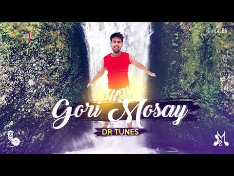 Dr Tunes - Gori Mosay (By d River) - [ 2k18 Chutney ]