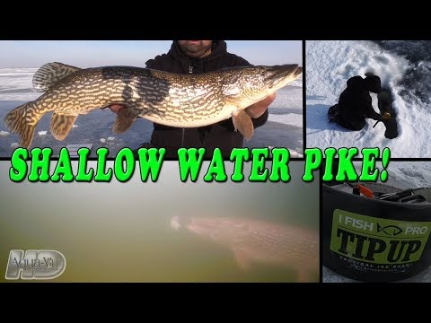 Ice Fishing For Shallow Water Pike!