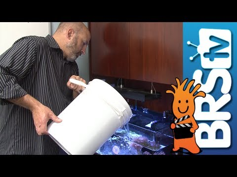 Water Changes - EP 1: Saltwater Aquarium Maintenance