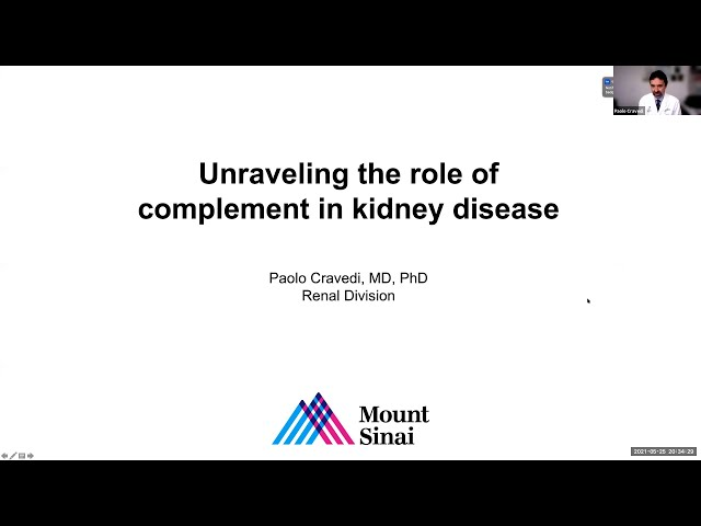 Unraveling the Role of Complement in Kidney Disease