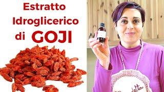 ESTRATTO IDROGLICERICO DI GOJI FATTO IN CASA DA BENEDETTA - Goji Berry Hydroglycerine Extract