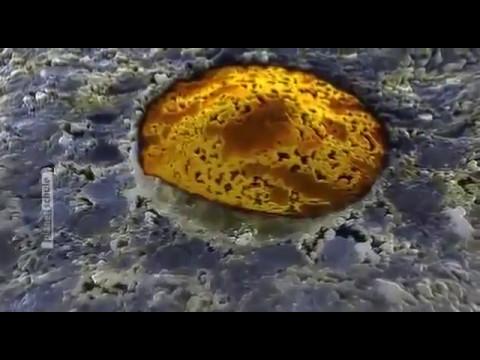 Dokumentarfilm - Geheimnisvolles Universum   Mensch Doku 2016