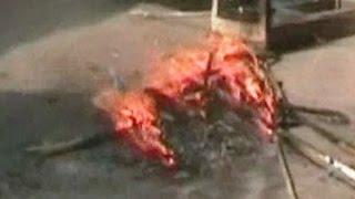 Violence erupted in UP
