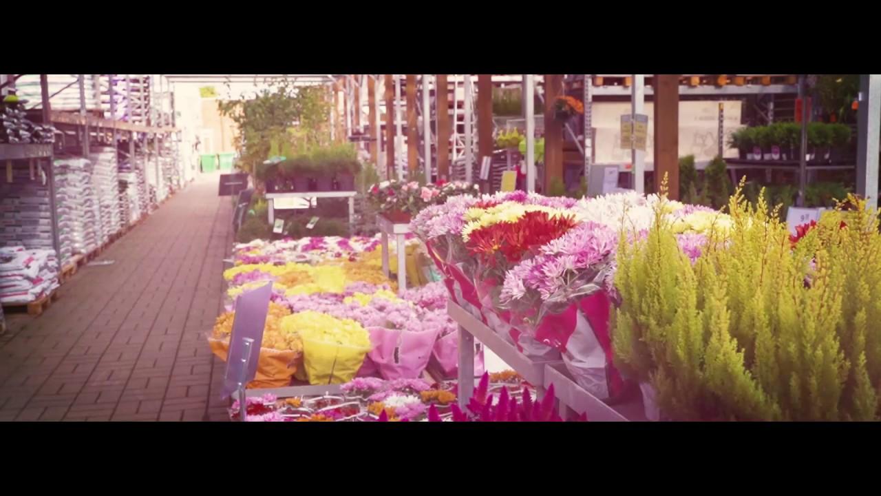 K-rauta lilled