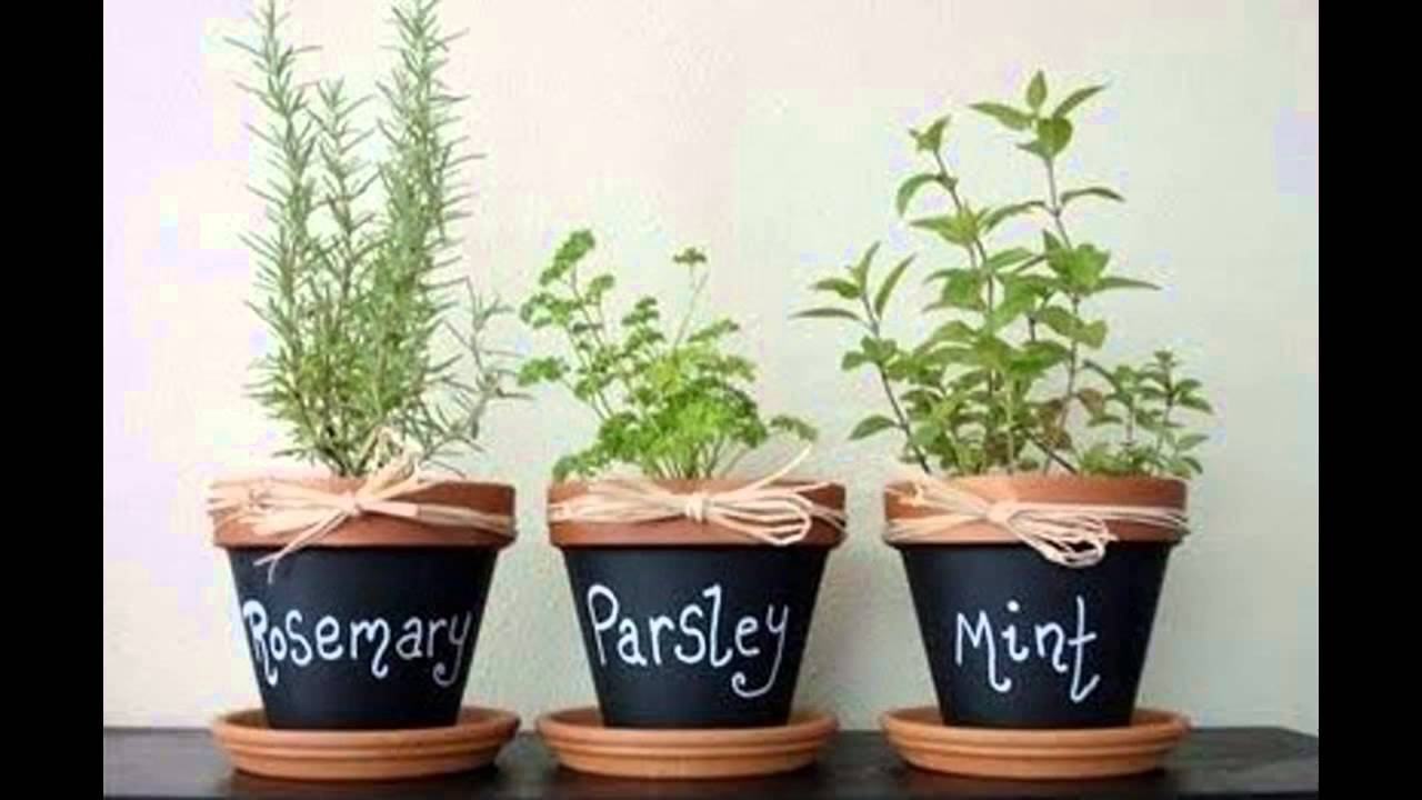 Garden Ideas] apartment herb garden - YouTube