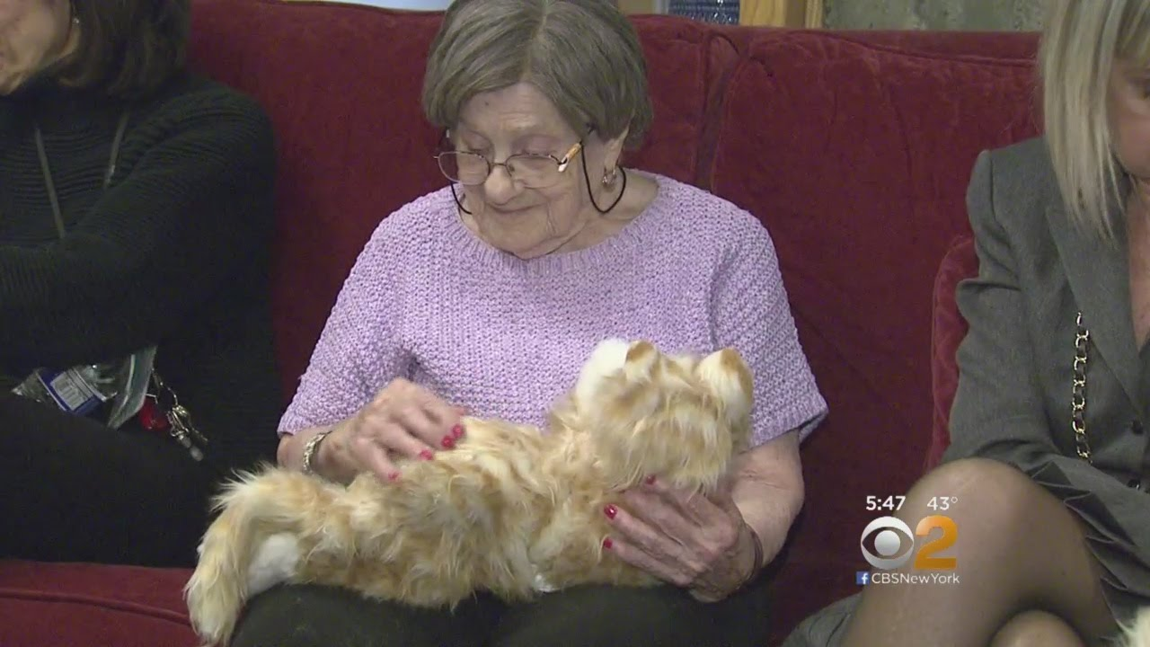 Robotic Pets Bring New Approach To Patients With Dementia