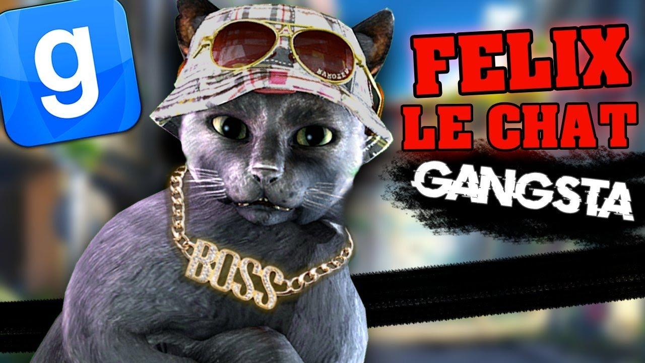 FELIX LE CHAT GANGSTA - GARRY'S MOD DARKRP
