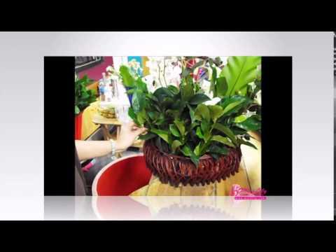 การจัดดอกไม้สไตล์ Raybana (กระเช้าดอกไม้)