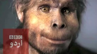 'First human' discovered in Ethiopia  BBC Urdu