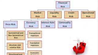Financial Model Financial Modeling Exam Jirav – Meta Morphoz