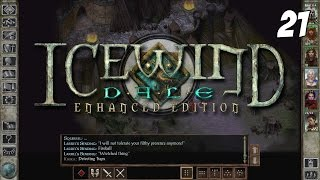 Icewind Dale: Enhanced Edition #21 - Arundel