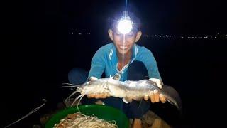 Khai Trương giăng Câu Đêm Sông Tiền Trúng Lớn  Đụng Phải Ổ Cá Hú Bội Thu # SĂN BẮT ĐỒNG THÁP #