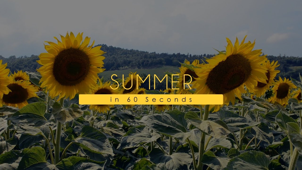 Summer in 60 Seconds - life in Le Marche, Italy