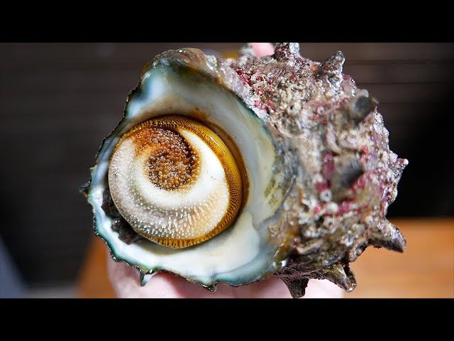 Japanese Street Food - TURBAN SHELL Barbecue & Sashimi Okinawa Seafood Japan