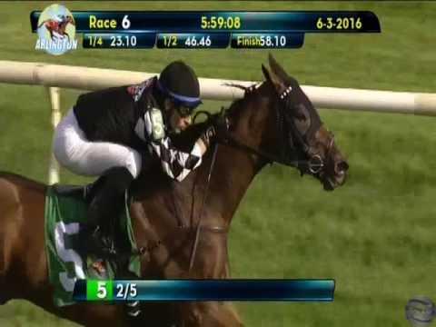 Horse Racing Partnership - Kingston Terrace wins at Arlington Park on 06/03/16