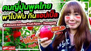 เก็บแอปเปิ้ลญี่ปุ่น ที่ Kimura kankou Fruit Farm - Yamagata