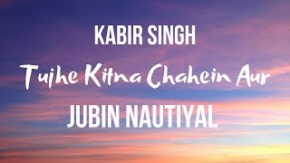 Tujhe Kitna Chahein Aur hum |Kabir Singh| |Jubin Nautiyal| Song Lyrics