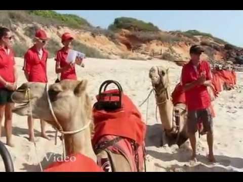 Australia Broome Hovercraft and Camel Safari