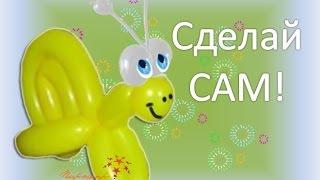 Видео урок Улитка из воздушных шаров ШДМ / Video lesson Snail balloon