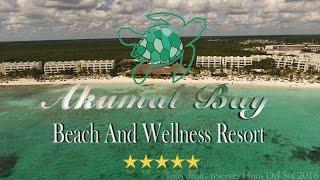 Akumal Bay Beach And Wellness