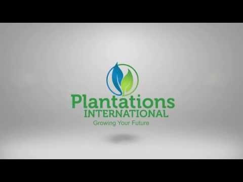 Welcome to Plantations International