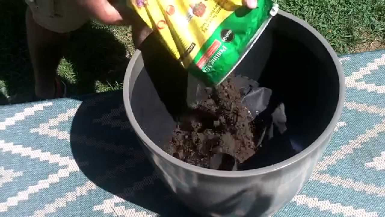 How to Fill a Tall Planter