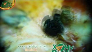 Хочу Пиццу(http://hochupizzu.com.ua/ - Доставка пиццы в Севастополе., 2012-01-13T14:38:48.000Z)
