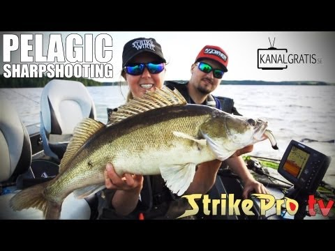 Strike Pro TV - Pelagic Sharpshooting