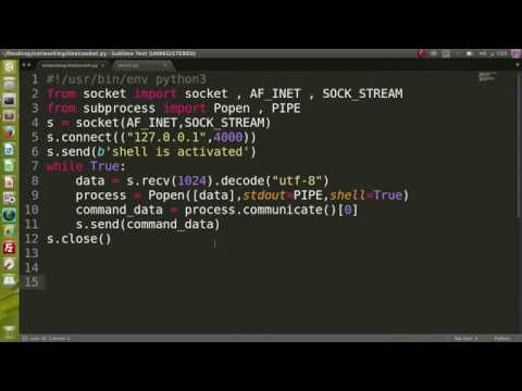 17_python security (python payload and hacking system command)